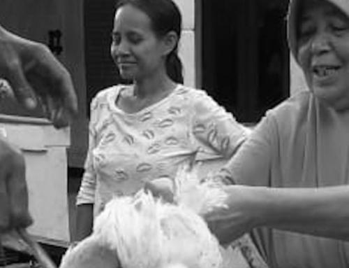 """Pernyataan Sikap:  """"Negara Tidak Hadir Untuk Menyelamatkan Peternak Ayam Dari Dampak Wabah Virus Corona"""""""